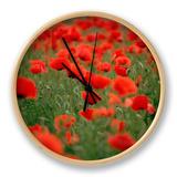 Poppy Field (Papaver Rhoeas), Germany, Europe Clock by Jurgen Freund