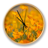 Riverside Poppies Clock by Vincent James
