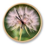 Delicate Dandelion Clock by Vincent James