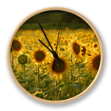 Beautiful Sunflower Field, Cape Elizabeth,Maine Clock by Nance Trueworthy