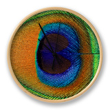 Close-Up of the Eye of a Peacock Feather, (Pavo Cristatus) Clock by Ashok Jain