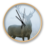 Epic Clock by David Tipling