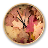 Fall Color in and around the Mountains in Utah. Clock by Patrick Brooks Brandenburg