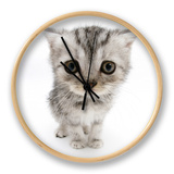 Silver Tabby Kitten with Big Eyes Clock by Mark Taylor