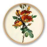 Austrian Rose Clock by Charles Joseph Hullmandel