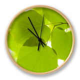Leaves of Linden Tree, Botanic Gardens Clock by Greg Elms