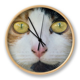 Hunters Eyes Clock by Adrian Campfield