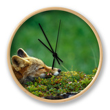 Red Fox Clock by Chris Linder