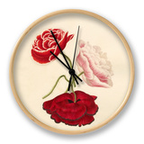 Papaver rhoeas Clock by Caroline Maria Applebee