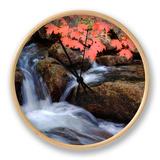 Autumn Stream & Color Clock by Vincent James