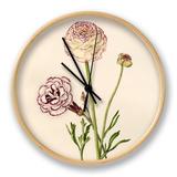 Dianthus plumarius: Ranunculus asiaticus Clock by Caroline Maria Applebee