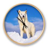 Polarwolf im Schnee, Idaho, USA Uhr von Tom Vezo
