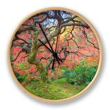 A Japanese Maple Turns Orange and Red at the Portland, Oregon Japanese Garden Ur af Ben Coffman