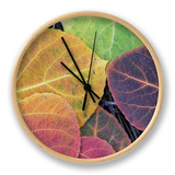 Aspen Fall Colors, Sierra Nevada Clock by Vincent James