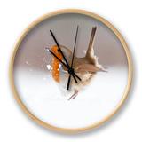 Robin (Erithacus Rubecula) Displaying in Snow, Nr Bradworthy, Devon, UK Ur af Ross Hoddinott