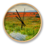 Wildflowers near Lancaster, California Clock by Vincent James
