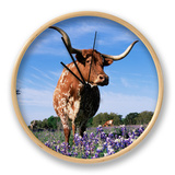 Texas Longhorn Cow, in Lupin Meadow, Texas, USA Clock by Lynn M. Stone