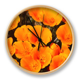 California Poppy Reserve, Antelope Valley, California Clock by John Elk III
