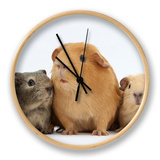 Mother Guinea Pig and Four Baby Guinea Pigs, Each a Different Colour Clock by Mark Taylor