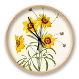 Corcopsis élégant: Corcopsis eleganus Clock by  Langlois