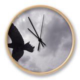 Raven (Corvus Corax) in Flight, Silhouetted, the Burren, County Clare, Ireland, June 2009 Ur af Hermansen