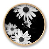Flowers in Black and White Ur af Phil Payne