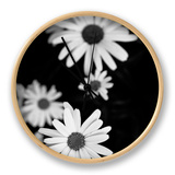 Flowers in Black and White Clock by Phil Payne