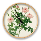 Rosier Pompon: Rosa Pomponia Clock by  Victor