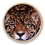 Portrait of a Jaguar, Brazil Clock by Mark Newman
