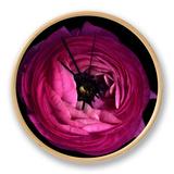 Pink Ranunculus Clock by Magda Indigo