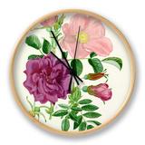 Rosa Fru Dagmar Hastrup, Rosa Roseraie de lHay Clock by Graham Stuart Thomas