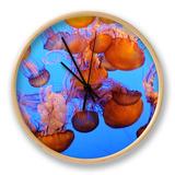 Jellyfish at the Monterey Bay Aquarium Ur af Douglas Steakley