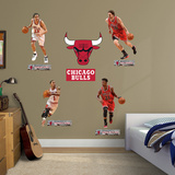 Chicago Bulls Power Pack Wall Decal