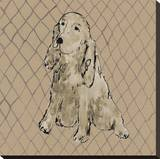 Boho Dogs II Stretched Canvas Print by Clare Ormerod