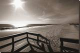 Bronze Beach III Stretched Canvas Print by Malcolm Sanders