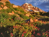 Pink Monkeyflowers below Mt. Hood Photographic Print by Steve Terrill