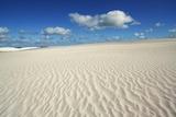 Dune Landscape near Cervantes Photographic Print by Frank Krahmer