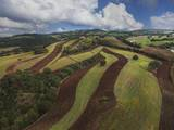 Working a Field near Manciano, Air View by Drone Photographic Print by Guido Cozzi