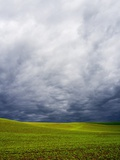 Spring Field of Peas with Storm Coming Photographic Print by Terry Eggers