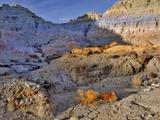 Blue Basin Photographic Print by Steve Terrill