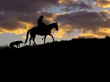 Cowboy in Silhouette with Sunset Photographic Print by Terry Eggers