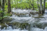 Mountain Stream Photographic Print by Rob Tilley