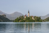 Bled Island Photographic Print by Rob Tilley