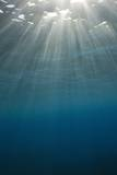 Sunbeams Filtering through the Ocean Surface Photographic Print by Reinhard Dirscherl