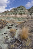 Blue Basin Unit Photographic Print by Steve Terrill