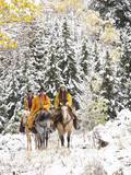 Cowgirls and Cowboy Riding in Autumn Aspens with a Fresh Snowfall Photographic Print by Terry Eggers