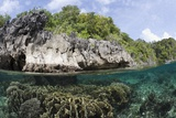 Shallow Coral Reef, Raja Ampat, West Papua, Indonesia Photographic Print by Reinhard Dirscherl