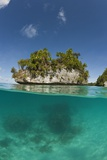 Small Island off Palau, Micronesia Photographic Print by Reinhard Dirscherl
