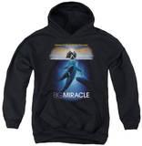 Youth Hoodie: Big Miracle - Poster Pullover Hoodie