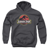 Youth Hoodie: Jurassic Park - Stone Logo Pullover Hoodie